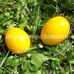 Japanisches Ei